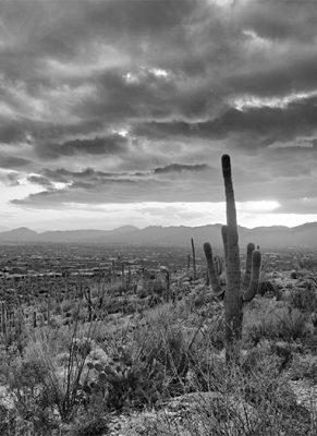 Tucson Istock 638343332 Test